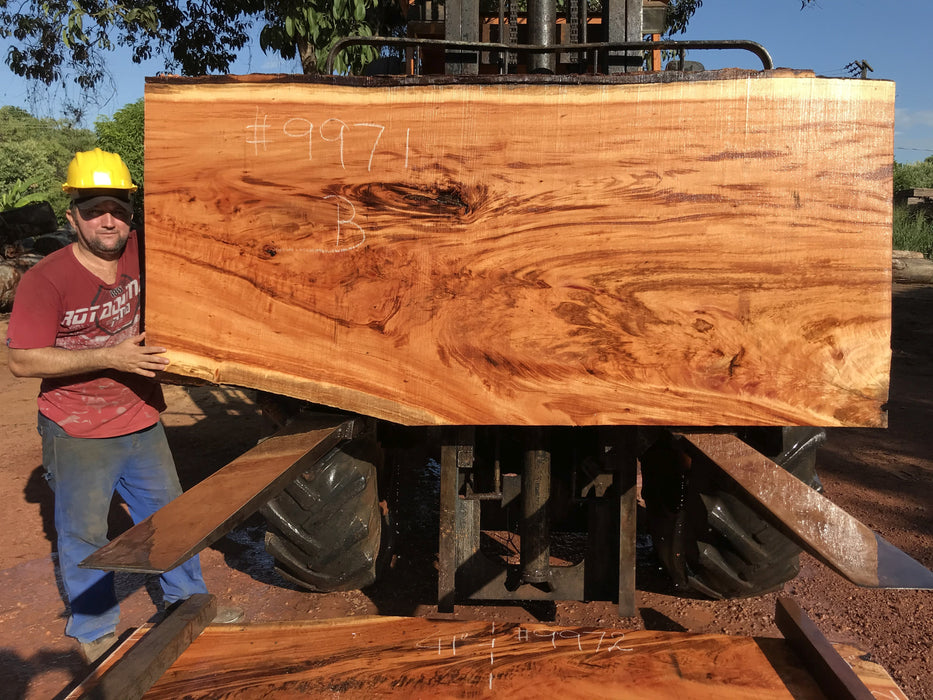 "Goncalo Alves / Tigerwood #9971- 2-3/8"" x 35"" to 41"" x 88"" FREE SHIPPING within the Contiguous US. - Big Wood Slabs"