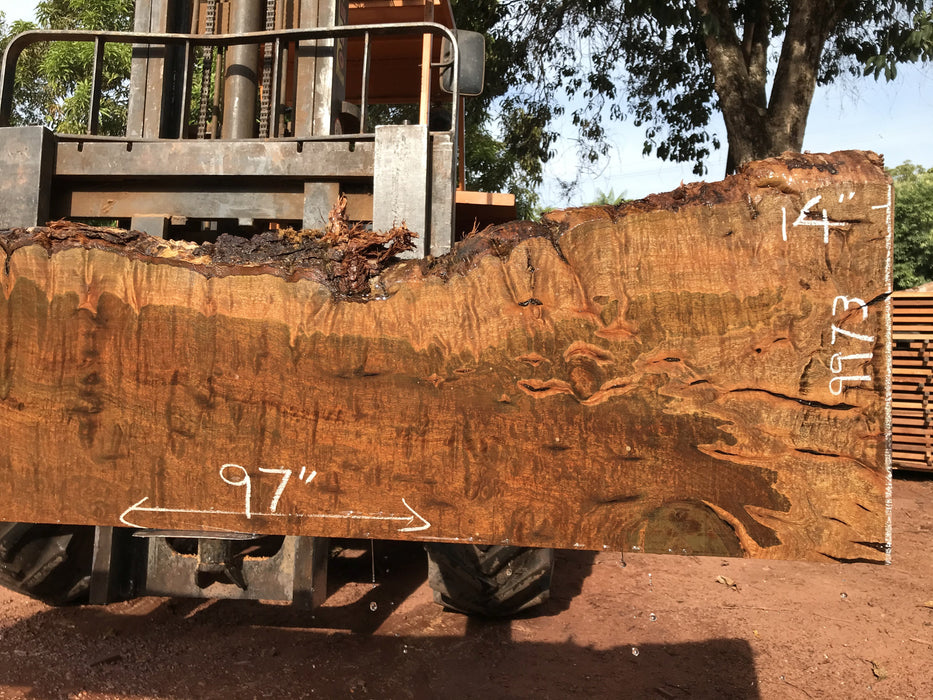 "Ipe / Brazilian Walnut #9973 - 2"" x 11"" to 14"" x 97"" FREE SHIPPING within the Contiguous US. - Big Wood Slabs"