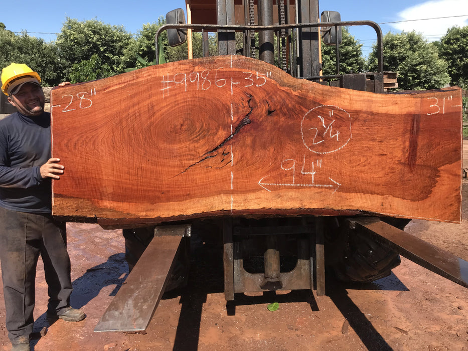 "Jatoba / Brazilian #9986 – 2-1/4″ x 28″ to 35″ x  94"" FREE SHIPPING within the Contiguous US. - Big Wood Slabs"