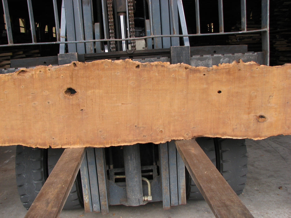 "Ipe / Brazilian Walnut #3751 - 2-1/4"" x 17"" x 169"""