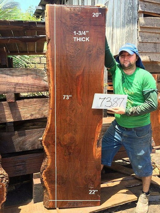 "Ipe / Brazilian Walnut #7387 - 1-3/4"" x 20"" to 22"" x 73"" FREE SHIPPING within the Contiguous US. - Big Wood Slabs"