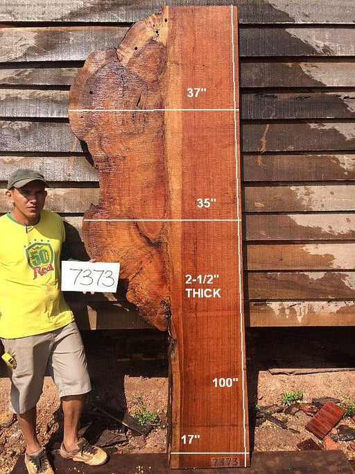 "Quaruba - 2 1/2"" x 17"" to 37"" x 100"" - Big Wood Slabs"
