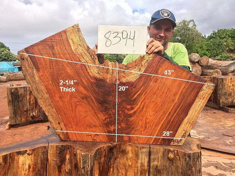 "Jatoba / Brazilian Cherry #8394- 2-1/4"" x 28"" to 43"" x 20"" FREE SHIPPING within the Contiguous US. - Big Wood Slabs"