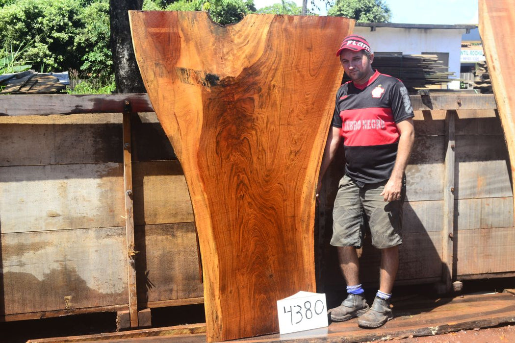 "Jatoba / Brazilian Cherry - 2-1/2"" x 26"" to 51"" x 71"" - Big Wood Slabs"