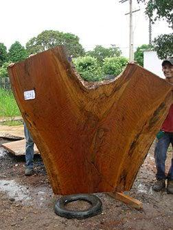 "Quaruba #2347(LW) - 2-1/2"" x 39"" to 85"" x 72"" FREE SHIPPING within the Contiguous US. - Big Wood Slabs"