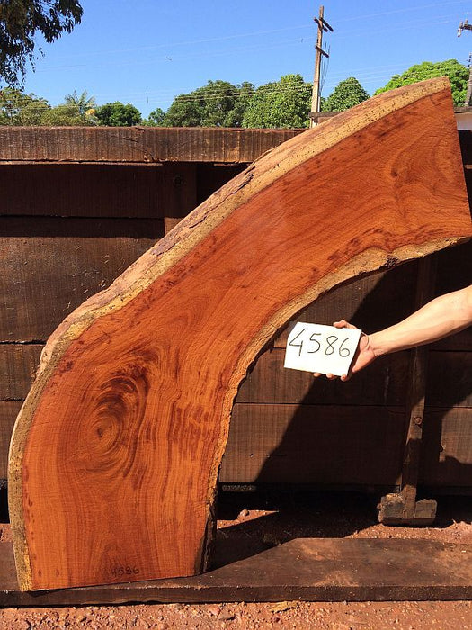 "Cumaru / Brazilian Teak #4586 - 2-3/4"" x 15"" to 22"" x 63"" FREE SHIPPING within the Contiguous US. - Big Wood Slabs"
