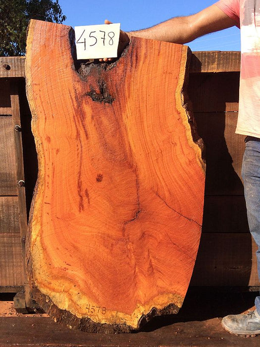 "Cumaru / Brazilian Teak - 2-1/2"" x 27"" to 29"" x 50"" - Big Wood Slabs"
