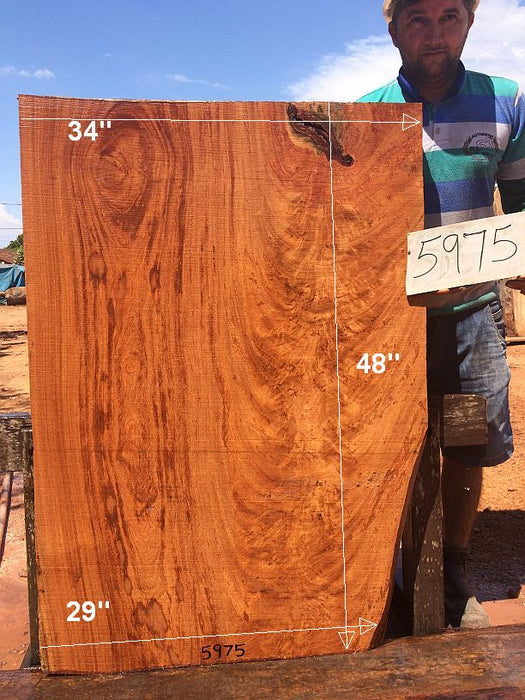 "Angelim Pedra #5975 - 2-1/2"" x 29"" to 34"" x 48"" - Big Wood Slabs"