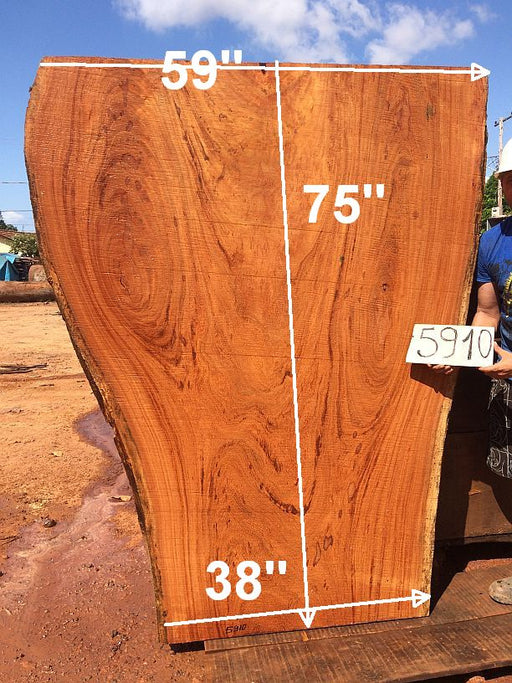 "PRESIDENT'S SALE ITEM - Angelim Pedra #5910 - 2-1/2"" x 38"" to 59"" x 75"" FREE SHIPPING within the Contiguous US. - Big Wood Slabs"
