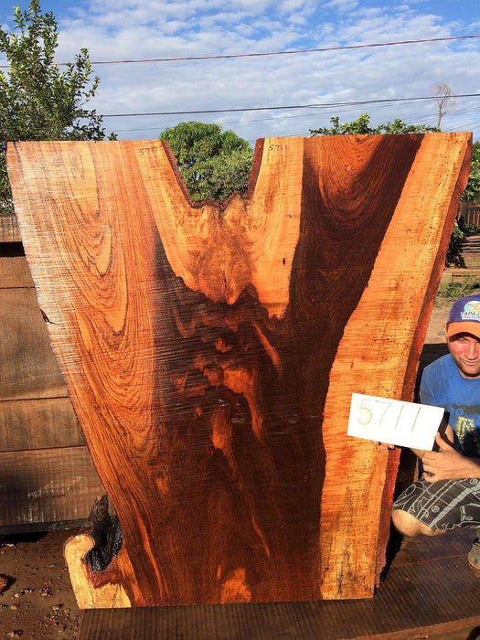 "Jatoba / Brazilian Cherry #5711-  2-3/4"" x 30"" to 55"" x 60"" FREE SHIPPING within the Contiguous US. - Big Wood Slabs"