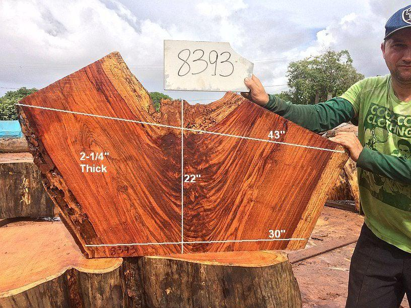 "Jatoba / Brazilian Cherry #8393- 2-1/4"" x 30"" to 43"" x 22"" FREE SHIPPING within the Contiguous US. - Big Wood Slabs"