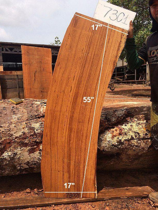 "Angelim Pedra #7301 - 2-1/2"" x 17"" x 55"" FREE SHIPPING within the Contiguous US. - Big Wood Slabs"