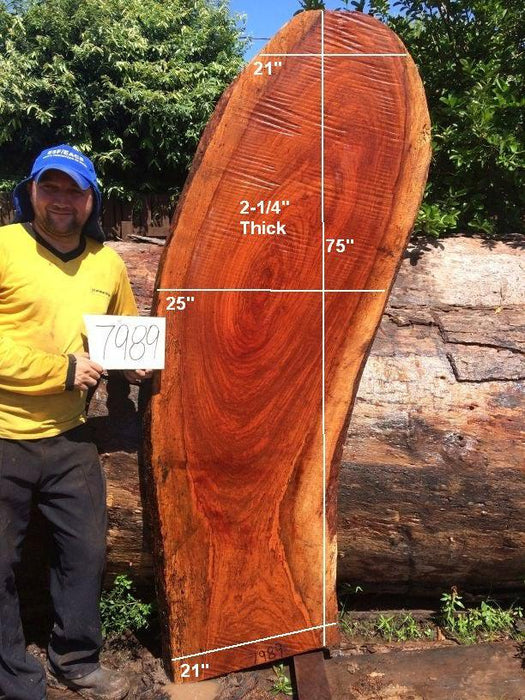 "Jatoba / Brazilian Cherry #7989- 2-1/4"" x 21"" to 25"" x 75"" FREE SHIPPING within the Contiguous US. - Big Wood Slabs"