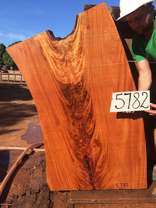 "Angelim Pedra #5782 - 2-1/2"" x 28"" to 30"" x 48"" FREE SHIPPING within the Contiguous US. - Big Wood Slabs"