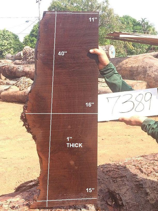"Ipe / Brazilian Walnut #7389 - 1"" x 11"" to 16"" x 40"" FREE SHIPPING within the Contiguous US. - Big Wood Slabs"