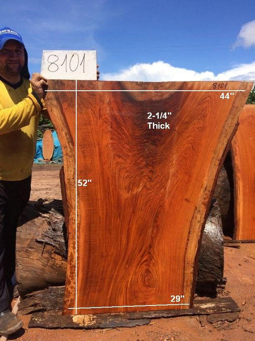 "Jatoba / Brazilian Cherry #8101-  2-1/4"" x 29"" to 44"" x 52"" FREE SHIPPING within the Contiguous US. - Big Wood Slabs"