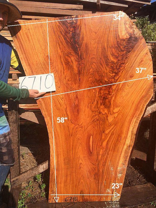 "PRESIDENT'S SALE ITEM - Jatoba / Brazilian Cherry #6710- 2-3/4"" x 23"" to 37"" x 58"" FREE SHIPPING within the Contiguous US. - Big Wood Slabs"
