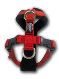 Padded Walking Harness