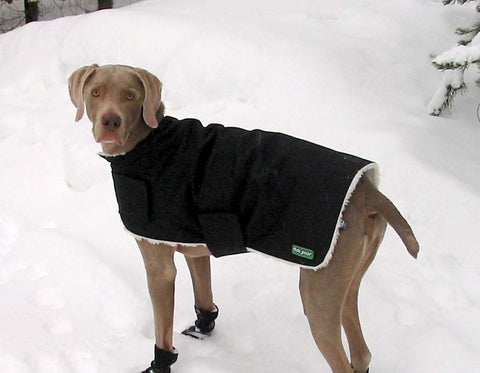 Winter Dog Coat w/ Sherpa Liner