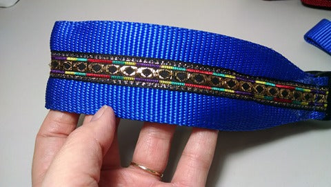 "14""x2"" Blue Sight Hound Collar w/ Leash"