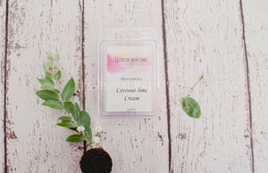 Luxe soy wax melts various fragrances - Essential bath time