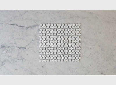 Broadwater White Matt Penny Round Mosaic Tile
