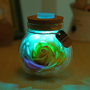 Forever Flower® LED Rose Bottle Lamp