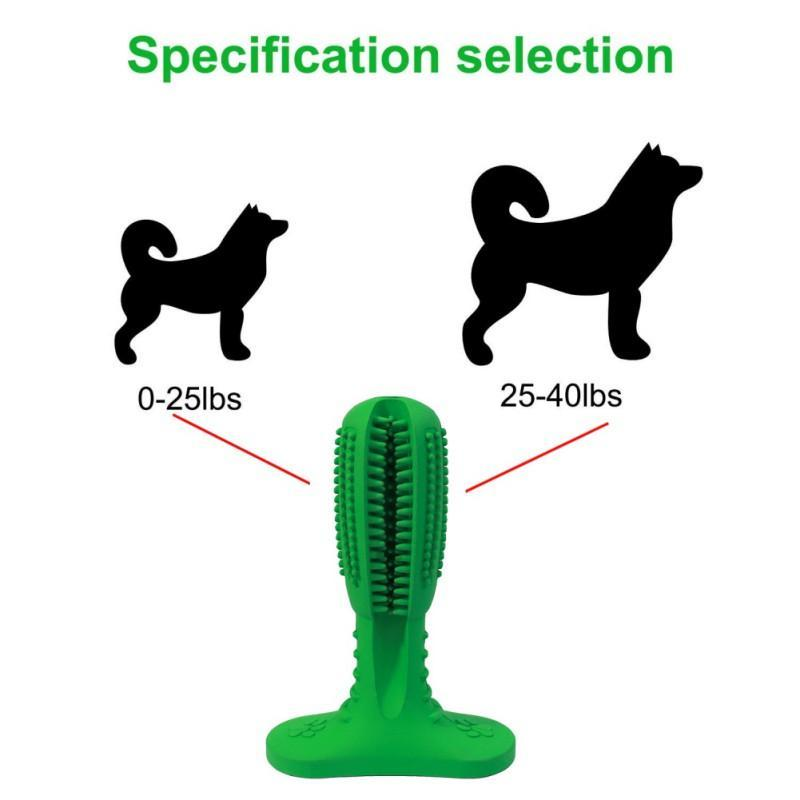 Best Teeth Cleaning Dog Chew Toy Stick Brush