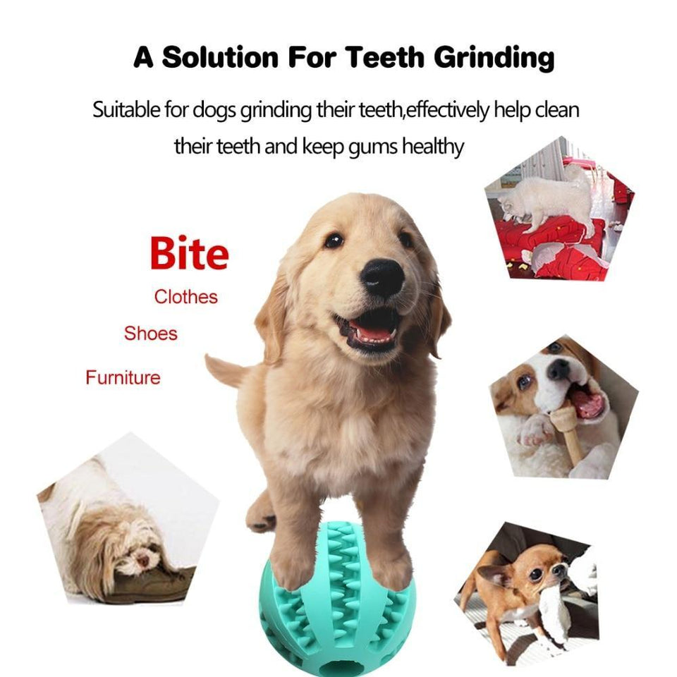 Best Teeth-Cleaning Safe Dog Feeder Chew Toy Ball