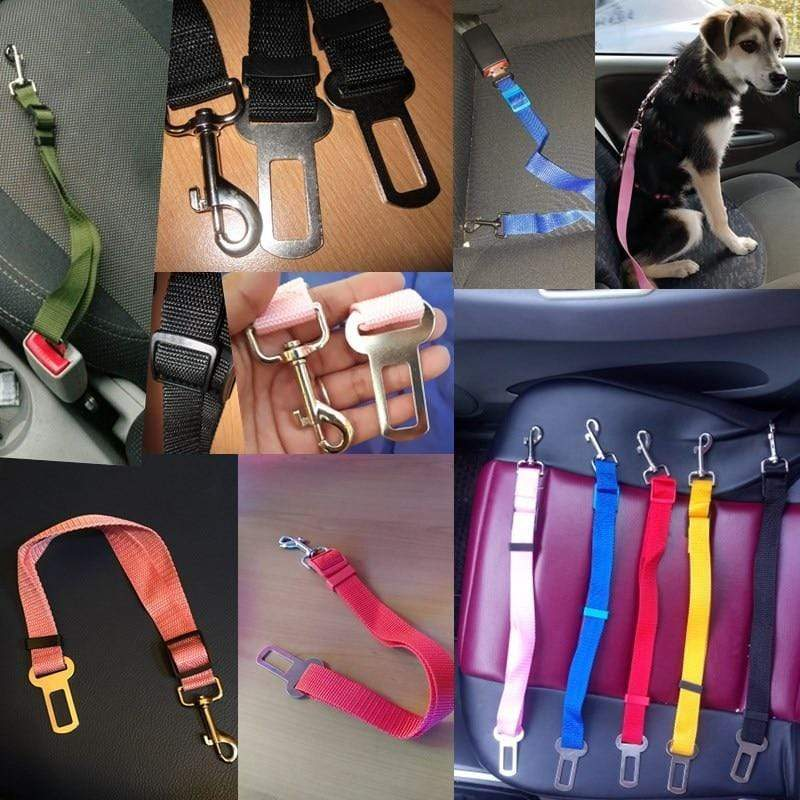 Best Dog Harness Clip Seat Belt