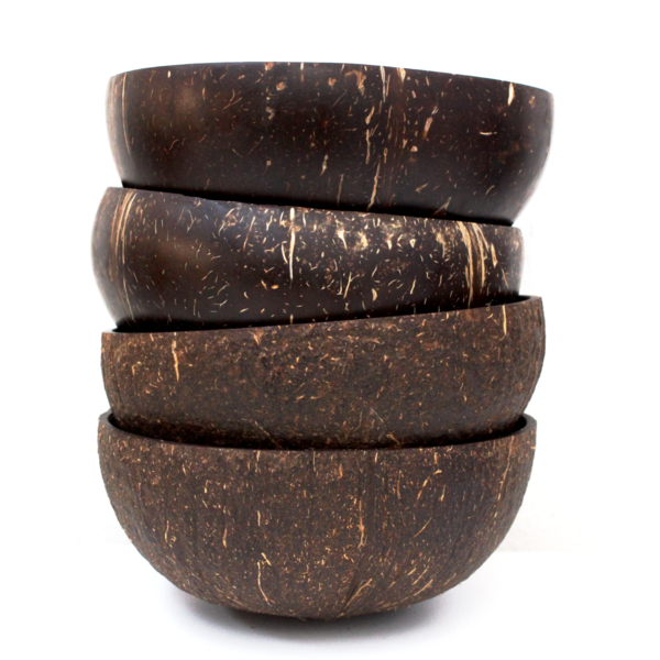 Coconut Bowls Combo: Set of 4