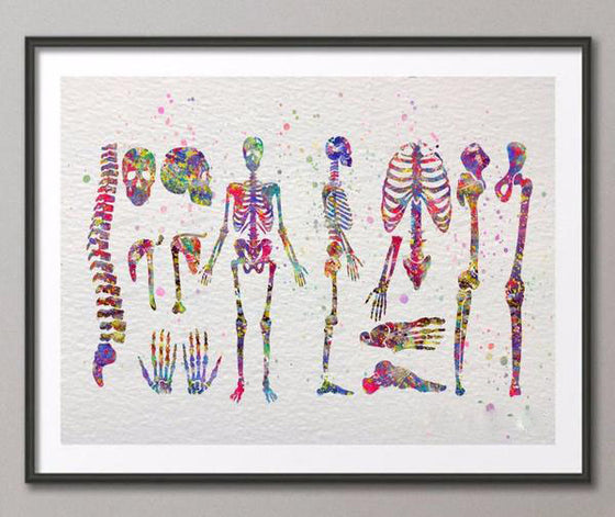 Radiologist Watercolor Human Body skeletal system poster H1