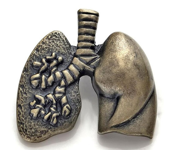 Respiratory Therapist Lungs Shape Brooch Lapel Pin H1
