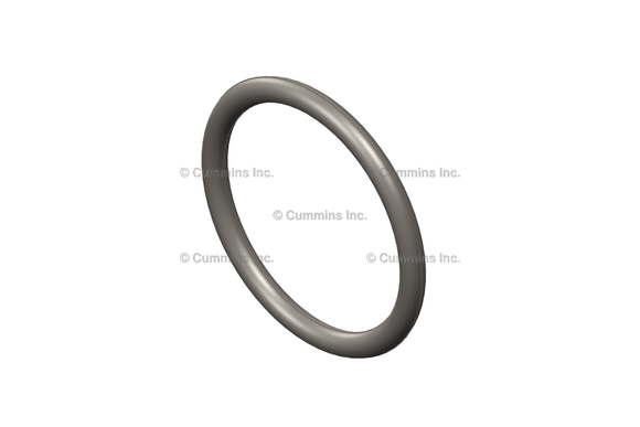 Cummins O Ring Seal - 3910824