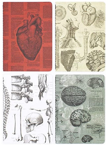 Anatomy cognitive surplus notebooks