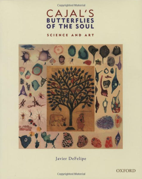 butterflies of the soul neuroscientist gift book