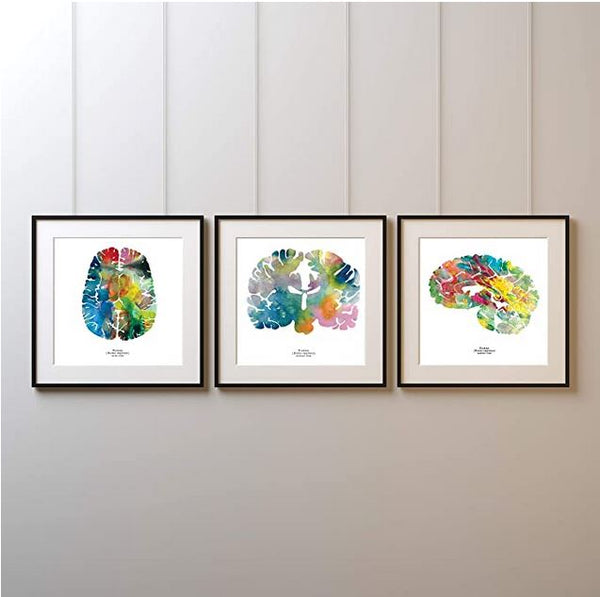 neuroscience artwork prints of the human brain