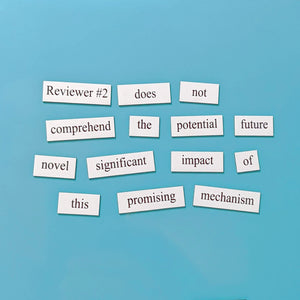Reviewer #2 academic word magnets
