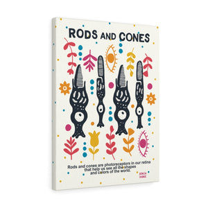 rods and cones vision seeing colors anatomy illustration biology science wall art canvas