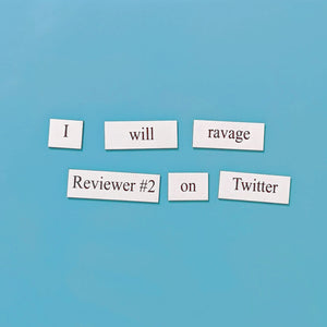 ravage reviewer #2 on Twitter word magnets