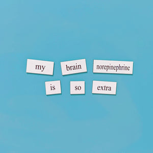 Neuroscience Word Magnets