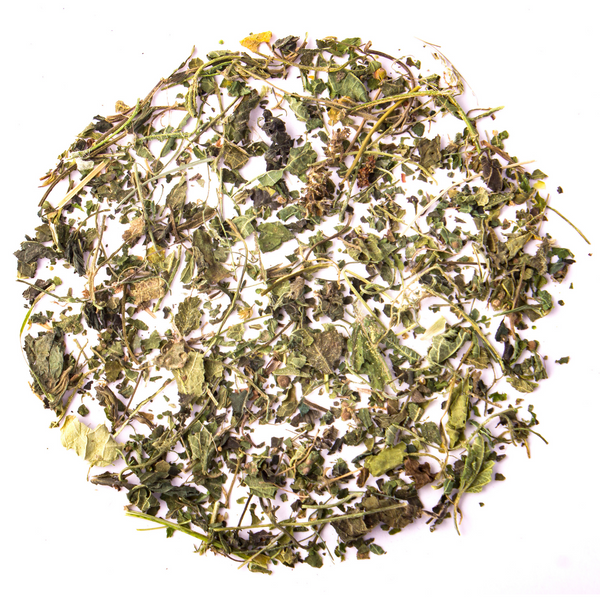 Pure Nettle Leaf Tea