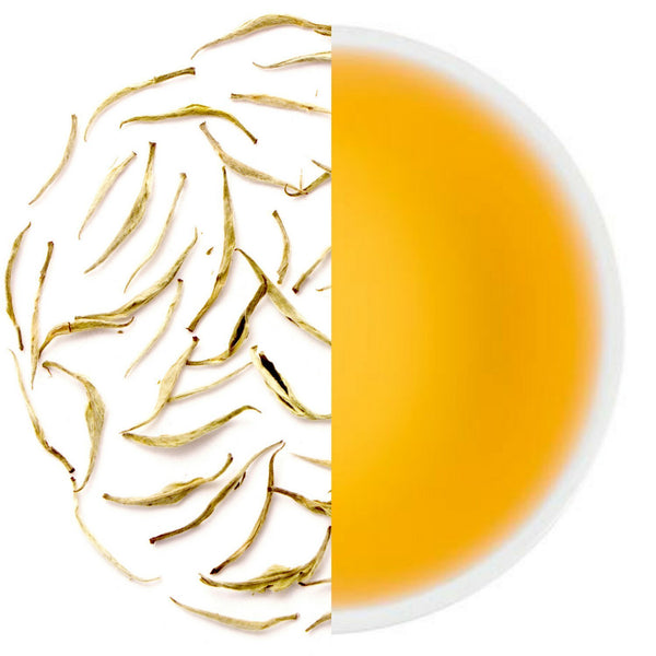 Silver Needle Exotic White Tea