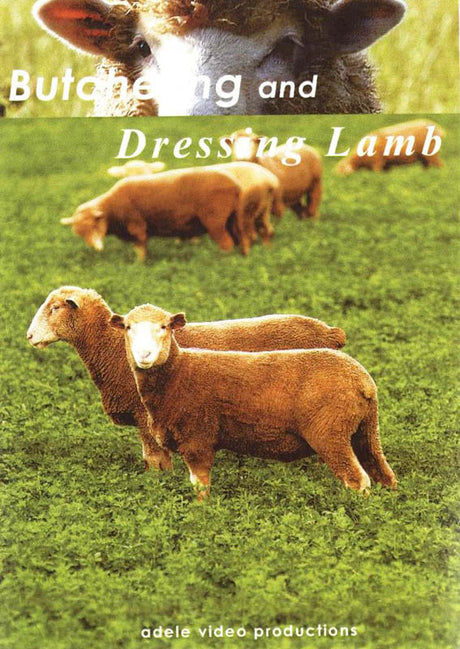 DVD  - Butchering & Dressing Lamb - 45 Minutes