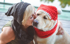 Cute Dog Hats For Dogs of All Shapes And Sizes !