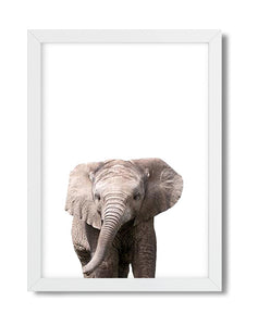 Cute elephant woodland animal nursery art print for babies