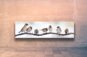 Sparrows on a tree branch birds banner canvas art print