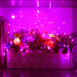 YIHONG 2 Set String Lights 8 Modes Battery Operated Fairy Lights for Christmas Bedroom Garden Wedding Party Indoor Outdoor Decor-Pink