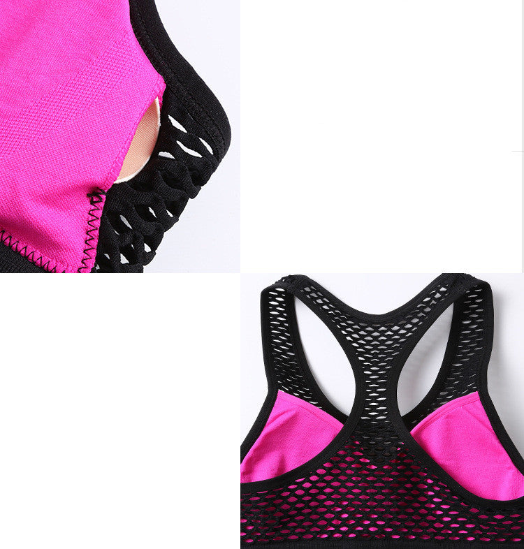 Meshed Sports Bra - Pink