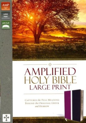 Amplified Holy Bible Dark Orchid, Deep Plum Large Print, Leather Cover